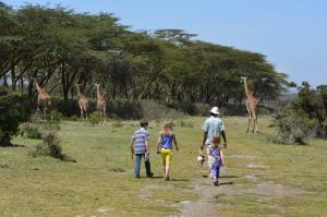 walkingwithgiraffes